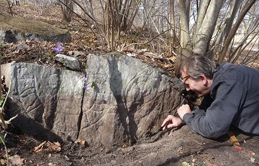 Runolog Magnus Källström i färd med att undersöka runstenen.