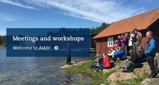 Meetings and workshops at Askö