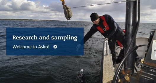 Research and experiments at Askö Laboratory