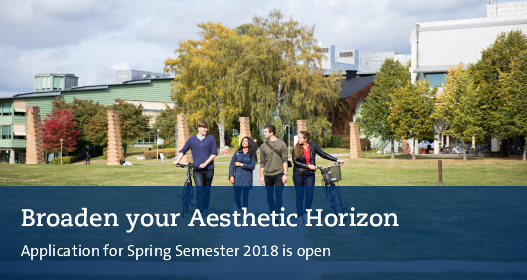 Broaden your aesthetic horizon. Apply now for Spring Semester 2018,
