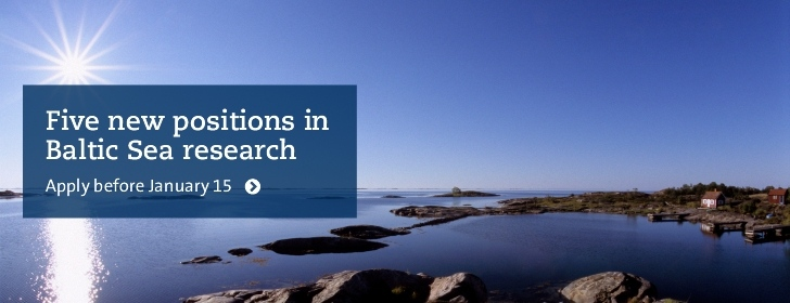 Stockholm University announces five new positions in Baltic Sea research. Photo: Jerker Lokrantz
