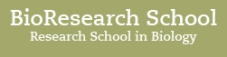 BioResearch School