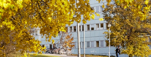 Autumn at Frescati campus. Photo: Eva Dalin
