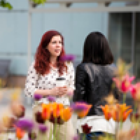 Two women talking, flowers in front of them. Photo: Eva Dalin