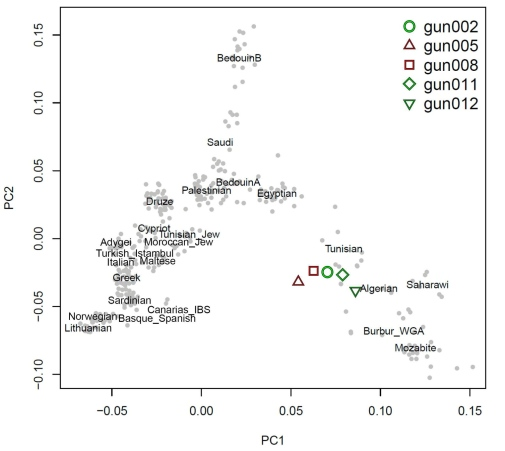 A Principal Components Plot showing the affinity of the Guanches to modern reference populations from Europe, North African, and the Near and Middle East.