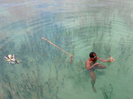 In many places in the world fishers still, utilise spearfishing as a subsistence means of catching food. The Bajo of SE Asia is an indigenous group who still commonly practice such activity in Wakatobi, Indonesia. Photo: Richard Unsworth.