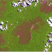 Landsat 8 OLI (Operational Land Imager) image retrieving kilometres of burned forests (magenta colour tones) spread across old-growth forests (green colour tones) in Eastern Amazonia. White colours in the image correspond to clouds. Source: U.S. Geological Survey's Earth Explorer Platform.