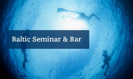 Baltic Seminar & Bar header