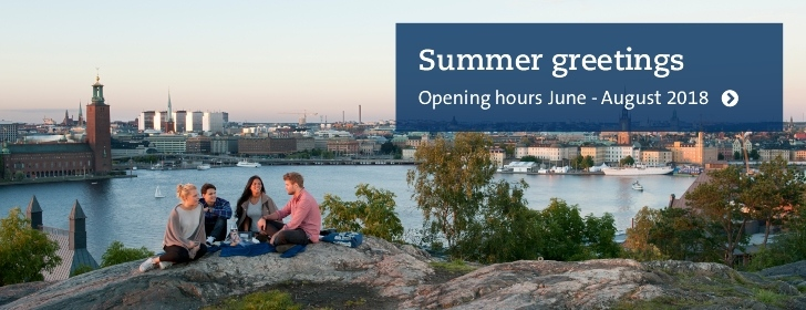 Four students enjoying the summer in Stockholm