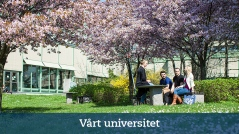 Kategorin vårt universitet på play