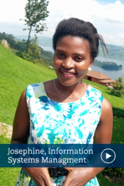 Josephine, Strategic Information Systems Management
