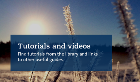 Tutorials and videos in the background snowy landscape