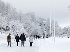 Stockholm University Frescati campus in winter