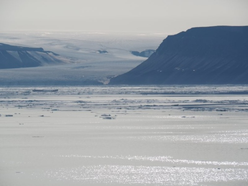 Ice streams flowing into the ocean from the Greenland Ice Sheet.