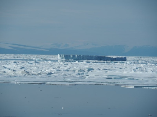 Sea ice and icebergs with Ellesmere Island in the background.