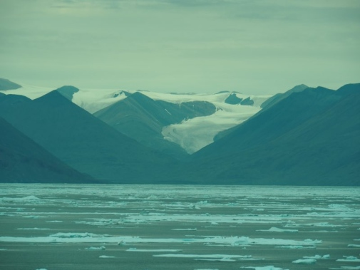 Glaciers on Ellesmere Island. Photo by Johan Nilsson