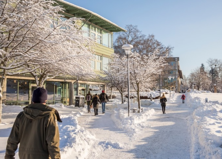 People walking on snow covered campus Photo: Niklas Björling