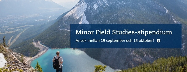 Ansök om Minor Field Studies-stipendium. Foto: Unsplash/Kalen Emsley
