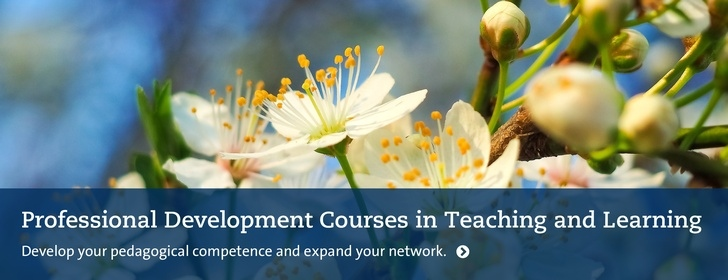 Professional development courses in teaching and learning Spring 2020