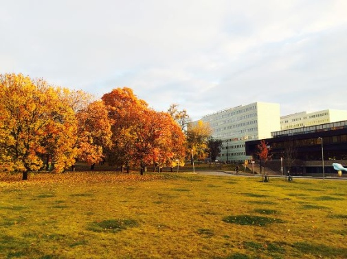 Stockholm University in autumn colours