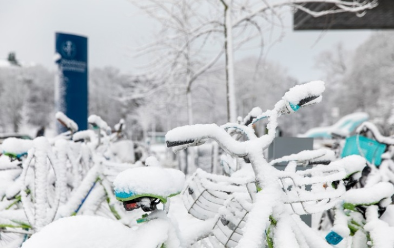 Snow-covered bikes outside Studenthuset Photo: Niklas Björling