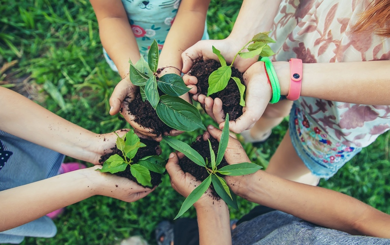 Children´s hands in a circle holding plants