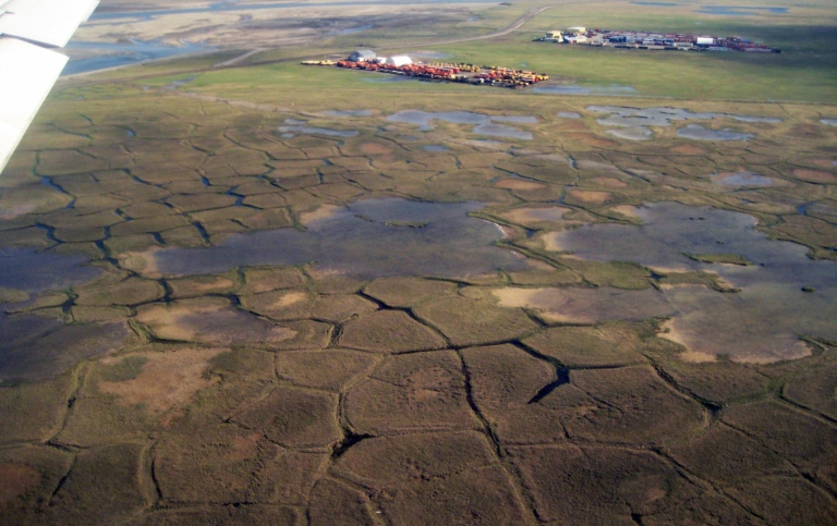 Tundra polygons with permafrost in northern Alaska are affected by climate change. Photo Britta Sann