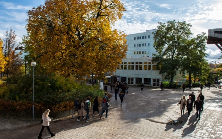 View over Södra huset in autumn. Photo: Ingmarie Andersson