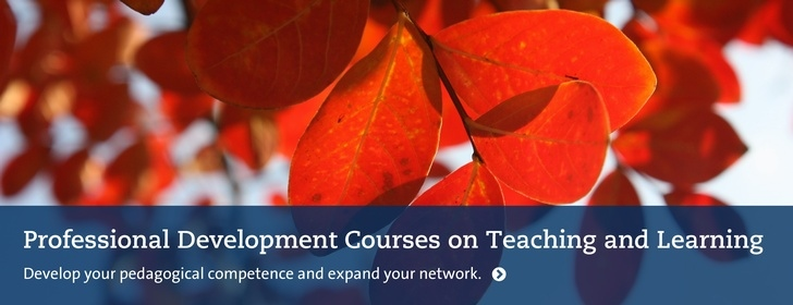 Courses on Teaching and Learning Autumn 2020