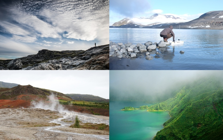 collage of different nature images