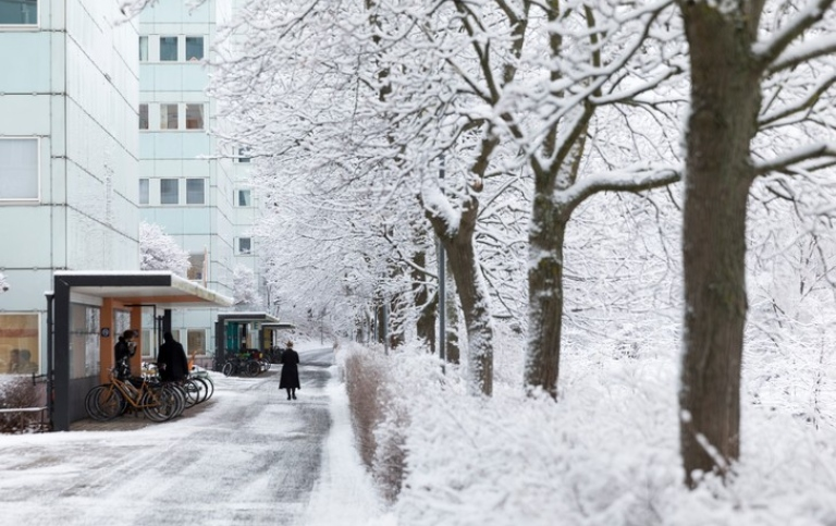 A snow-covered path outside Södra huset. Photo: Niklas Björling