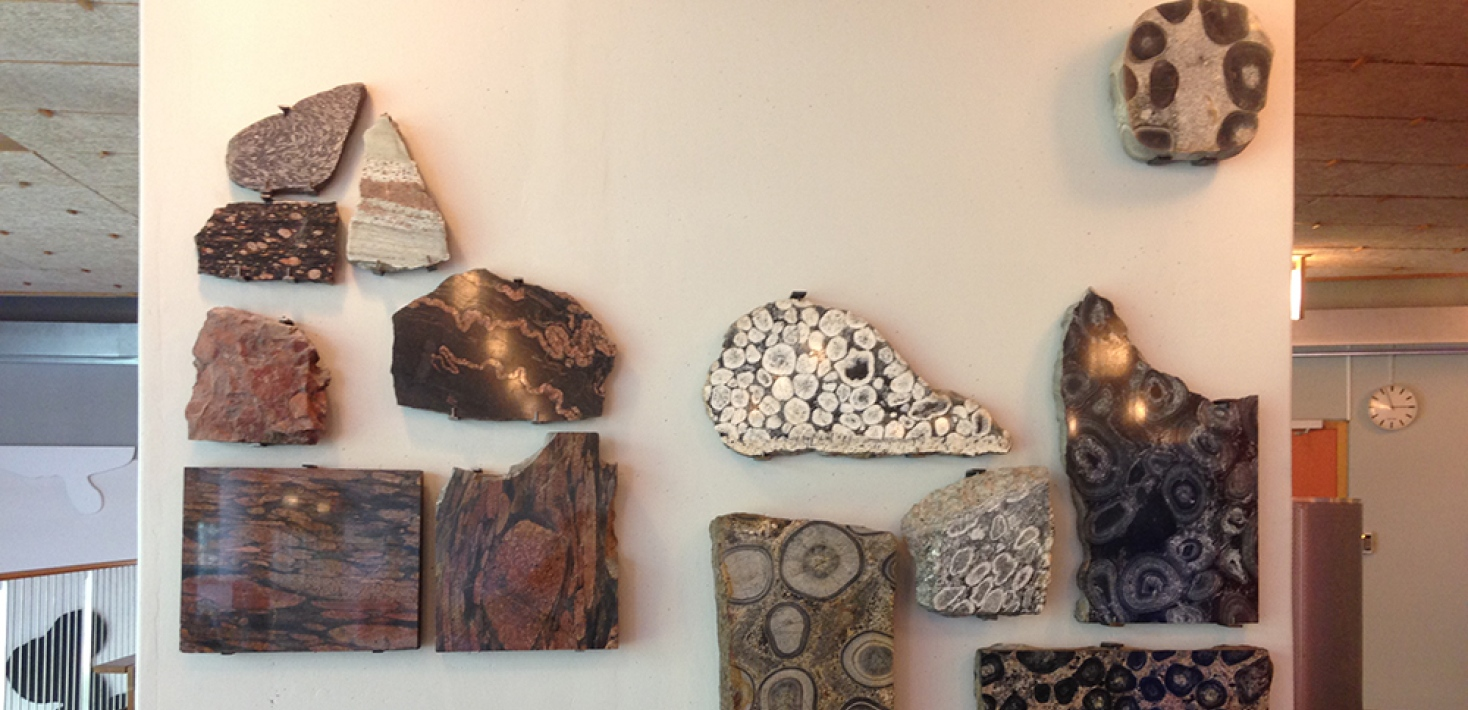collection of stones hanging on wall, geoscience building, stockholm university